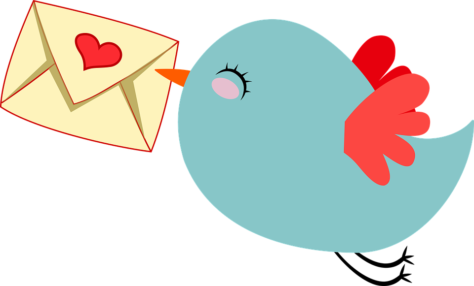 Animal, Anthropomorphized, Bird, Carrier, Cute, E-mail