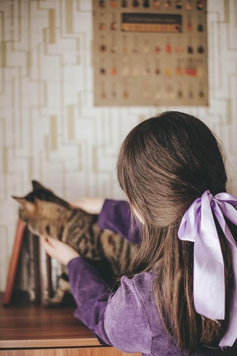 Purple, Cat, Tiger, Kitten, Stripes, Pet, Cute, Yes