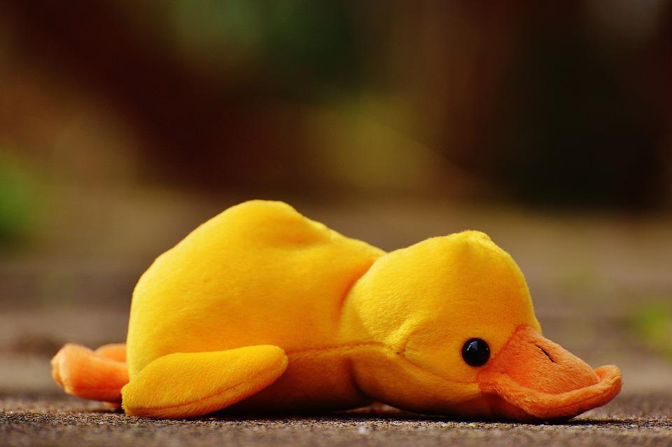 Free photo Cute Children Duck Toys Play Soft Toy Funny - Max Pixel