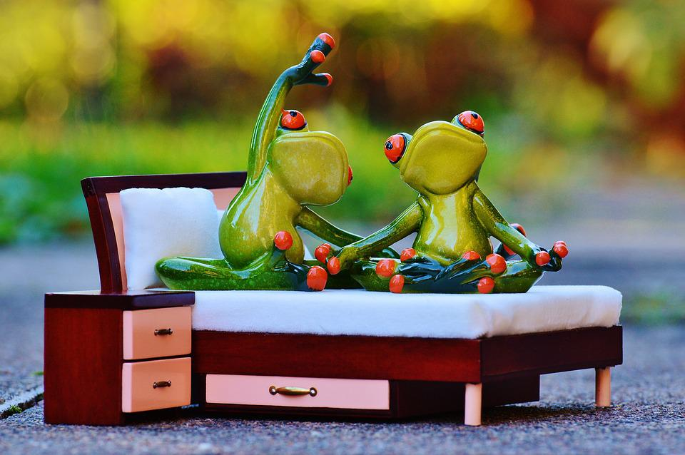 Frog, Yoga, Bed, Fig, Funny, Cute, Love, Concerns
