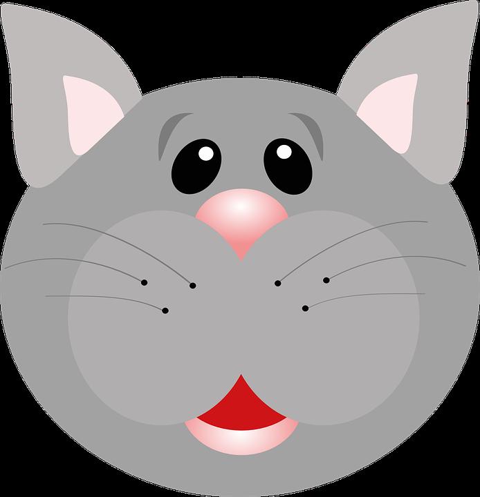 Cat, Feline, Cute, Pet, Animal, Whiskers, Grey, Gray