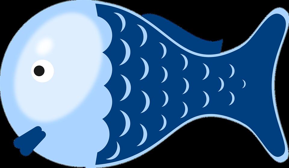Fish, Cartoon, Cute, Isolated, Character, Marine, Color