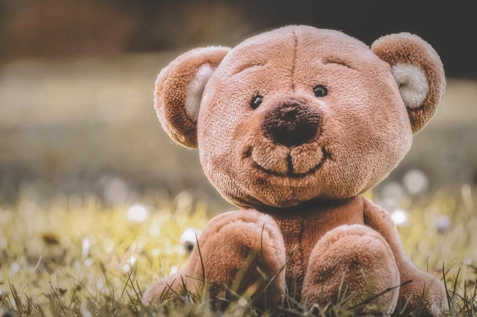 Teddy, Meadow, Soft Toy, Teddy Bear, Cute, Children