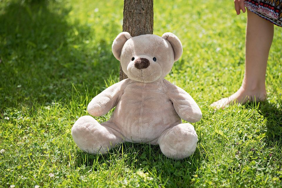 Teddy, Teddy Bear, Soft Toy, Stuffed Animal, Bear, Cute