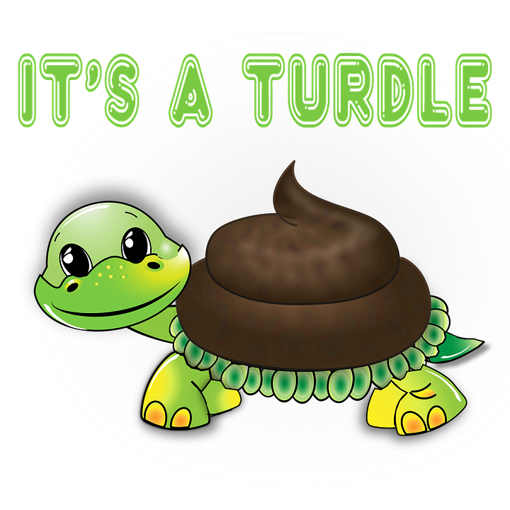 Funny, Stamp, Sticker, Turtle, Animal, Decal, Cute