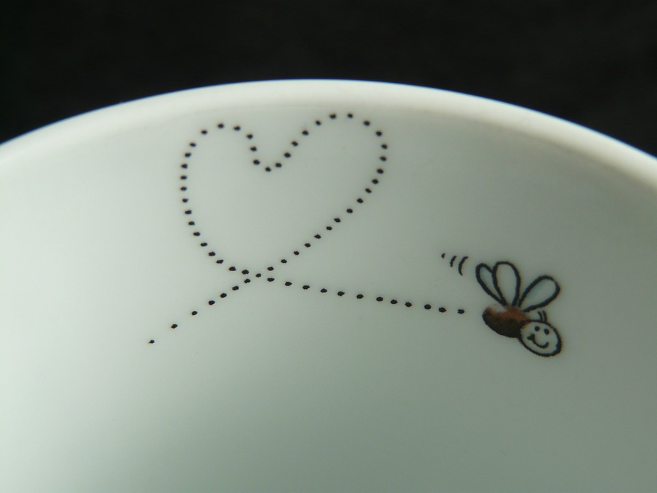 Fly, Mosquito, Heart, Love, Trace, Cute, Sweet, Romance