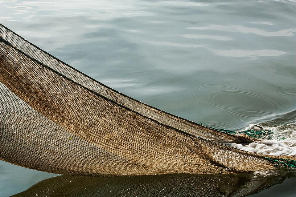 Cutter, North Sea, Shrimp, Ship, Fishing Net, Network