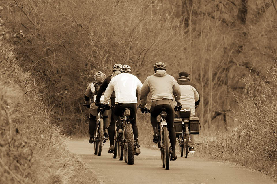 Cyclists, Drive, Cycling, Cycle Path, Autumn, Winter