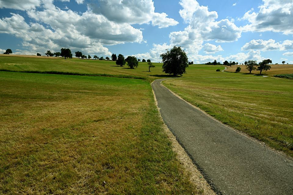 Cycle Path, Away, Bicycle Path, Nature, Landscape, Lane