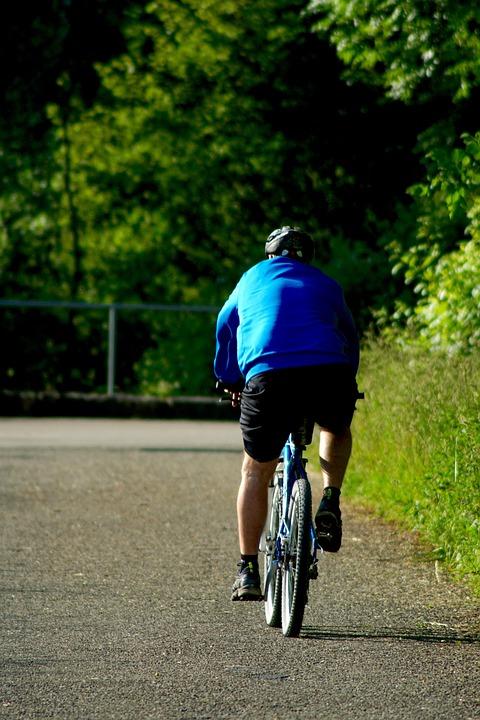Leisure, Sport, Biking, Cycle Path