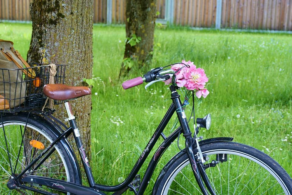 Bike, Wheel, Cycle, Cycling, Two Wheeled Vehicle