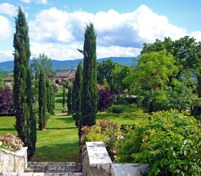 Italy, Tuscany, Cypress, Avenue