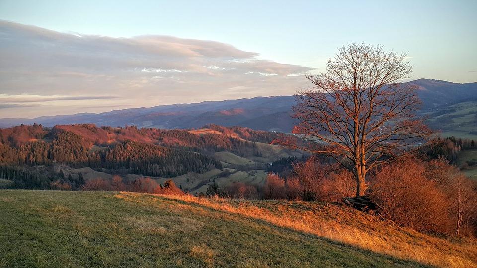 Czech Republic, Walachia, Autumn, Colours Of Autumn