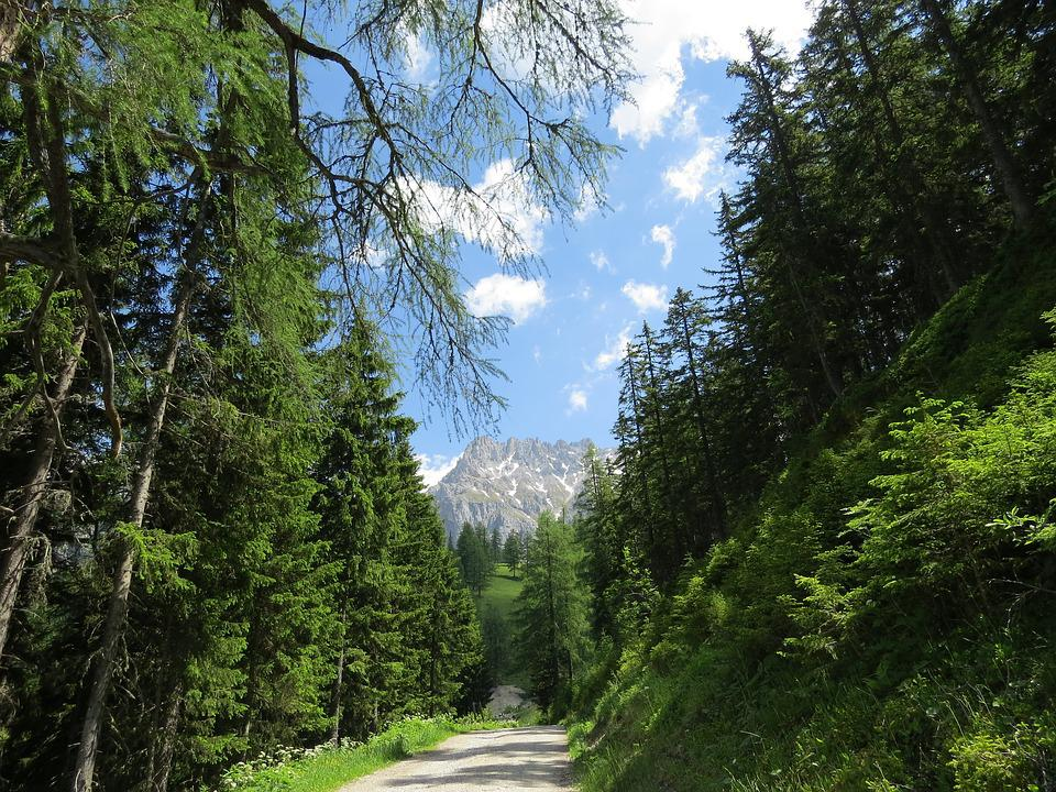 Dachstein, Austria, Forest, Nature, Mountains, Hiking