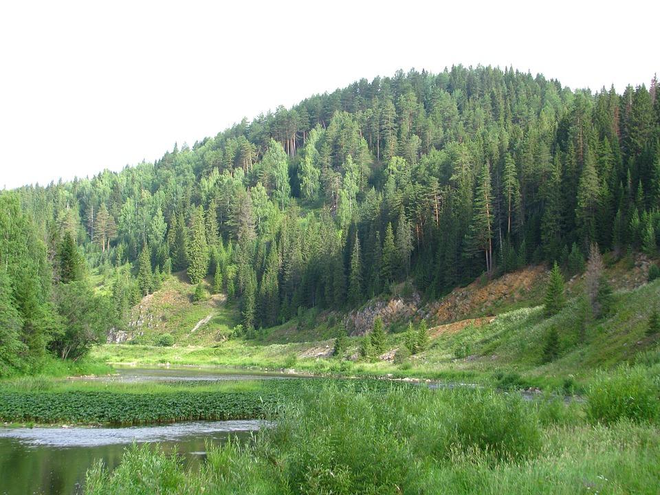 The River Koiva, Open Space, Dahl, Horizon, Landscape