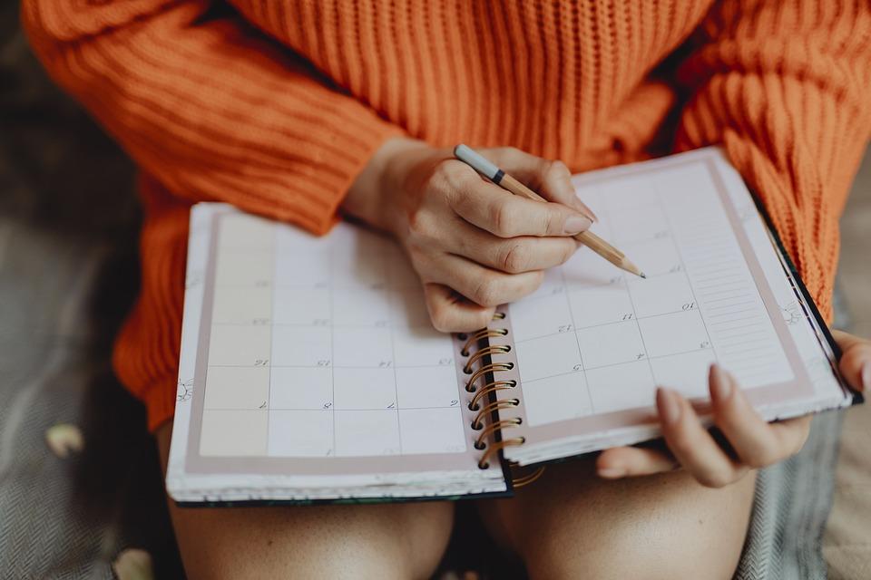 Agenda, Book, Calendar, Daily, Daily Planner, Date