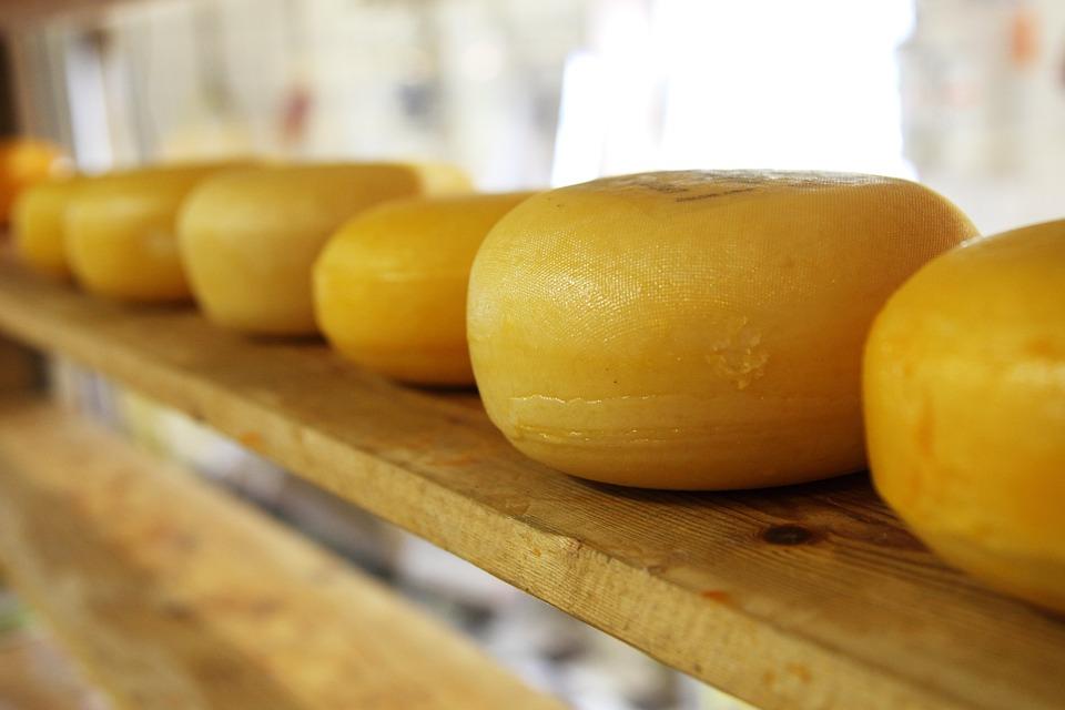 Cheese, Circle, Circular, Dairy, Dutch, Eat, Food