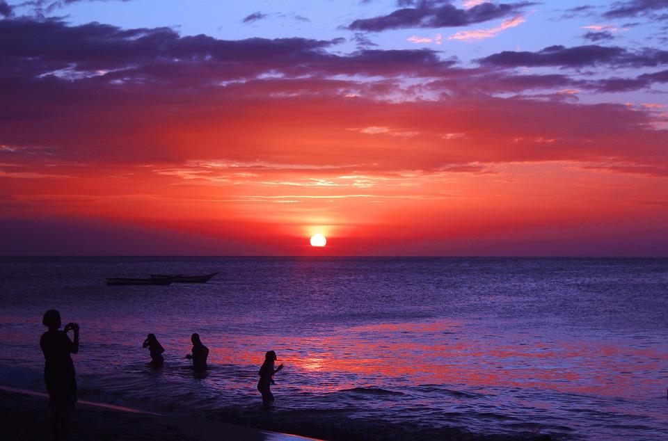 Beach, Manzanillo, Daisy, The Sunset, Purple Skt