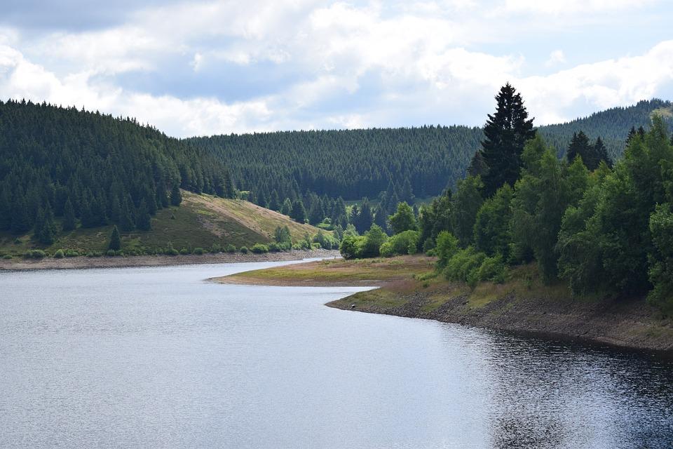 Dam, Eckertal