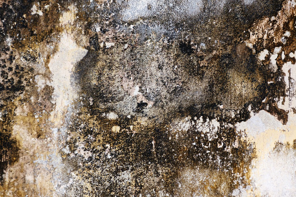 Abstract, Background, Bad, Damp, Design, Detail, Dirty