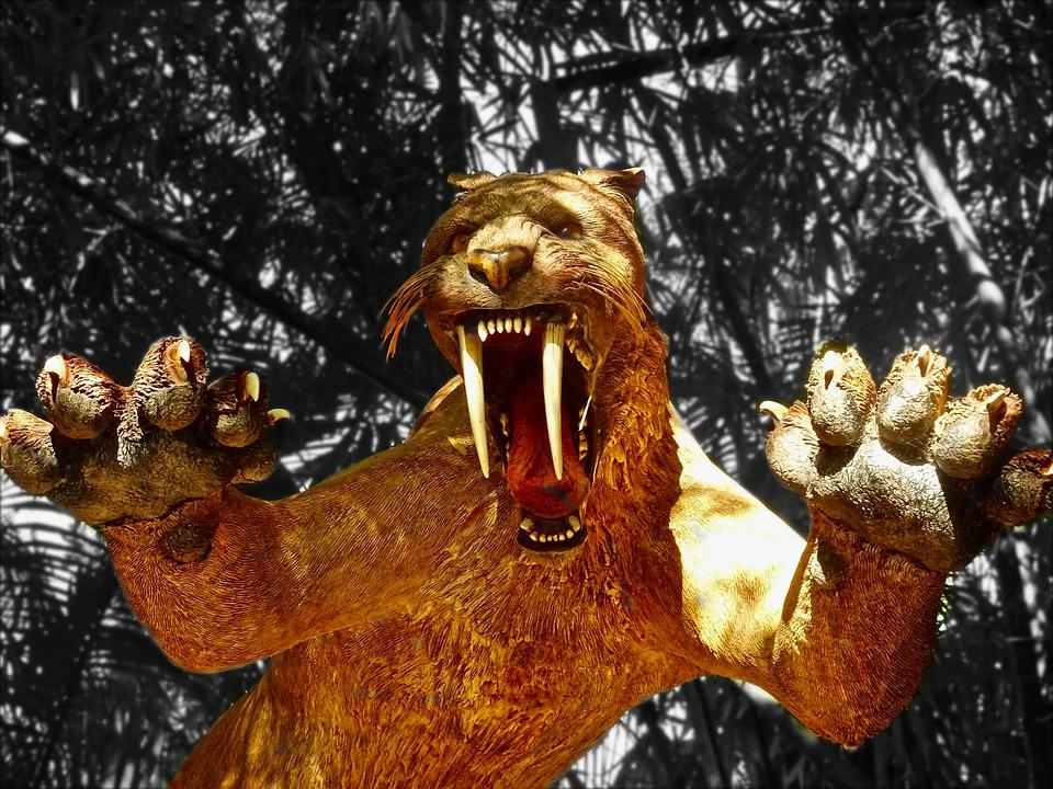 Tiger, Sabre Tooth, Extinct, Dangerous, Sculpture