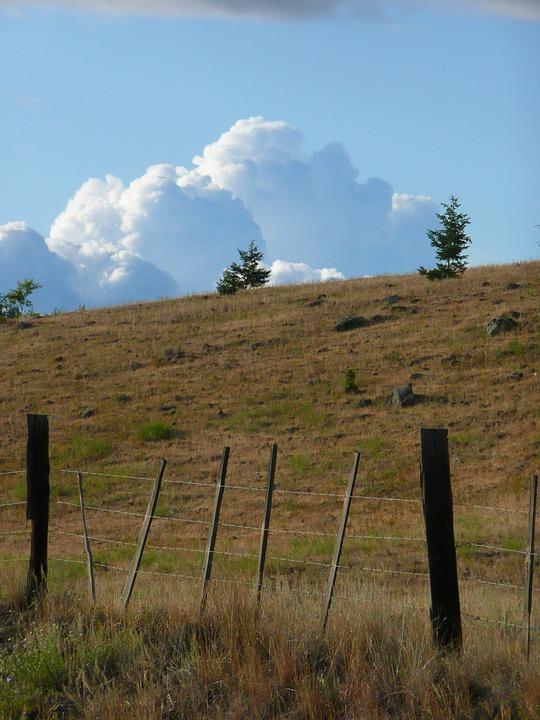 Thunderstorm, Dark Clouds, Towering Cumulus, Weather
