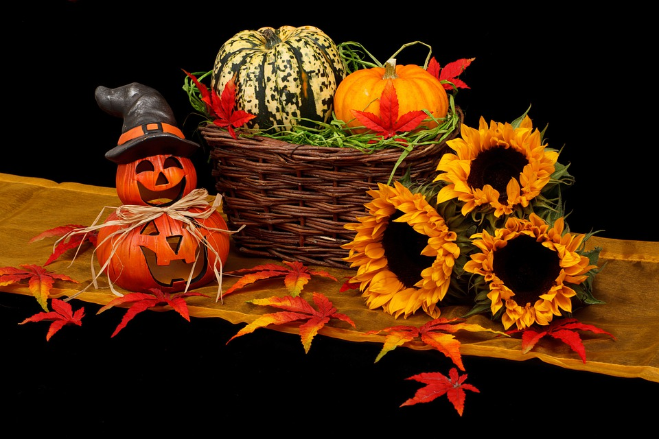 Autumn, Black, Dark, Decoration, Fall, Halloween