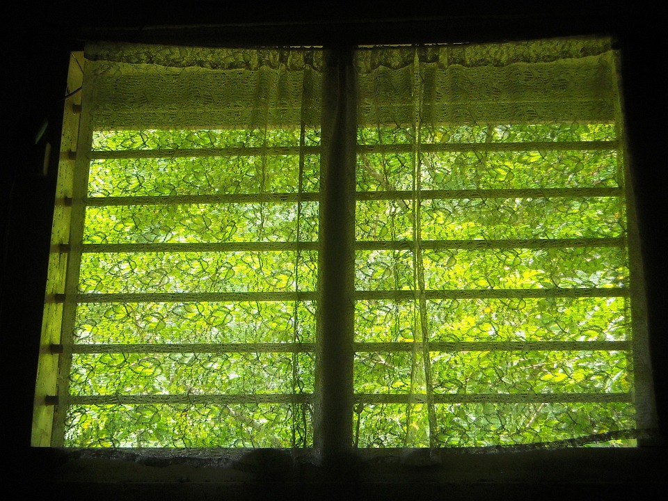 Window, Room, Home, Dark, Light