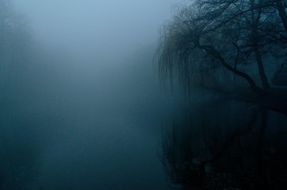 The Fog, Dark, Nature, Tree, Landscape, Twilight, Blue