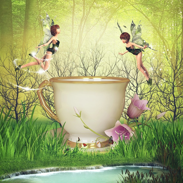 Grass, Dawn, Nature, Outdoors, Fairy