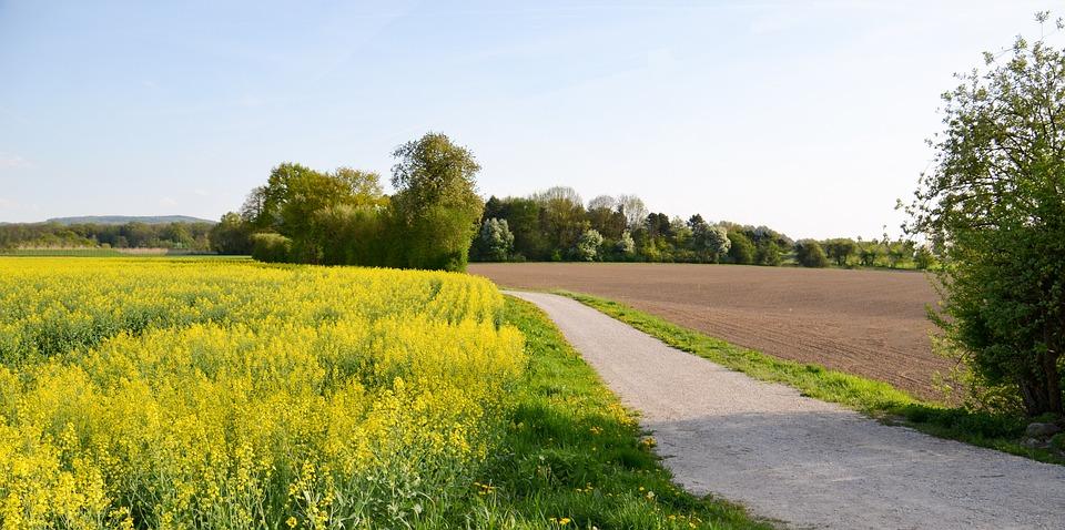 Landscape, Away, Dawn, Target, Rest, Idyll, Sky, Nature