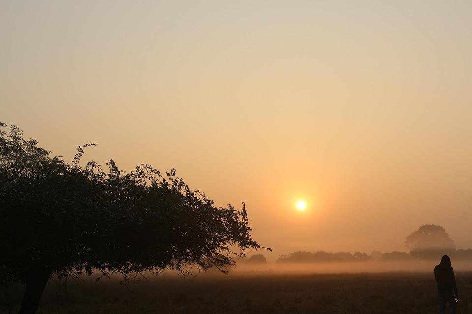 Sunset, Dawn, Fog, Sun, Silhouette