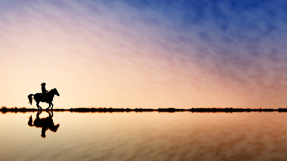 Reiter, Horse, Water, Lake, Sunset, Sky, Dawn, Waters