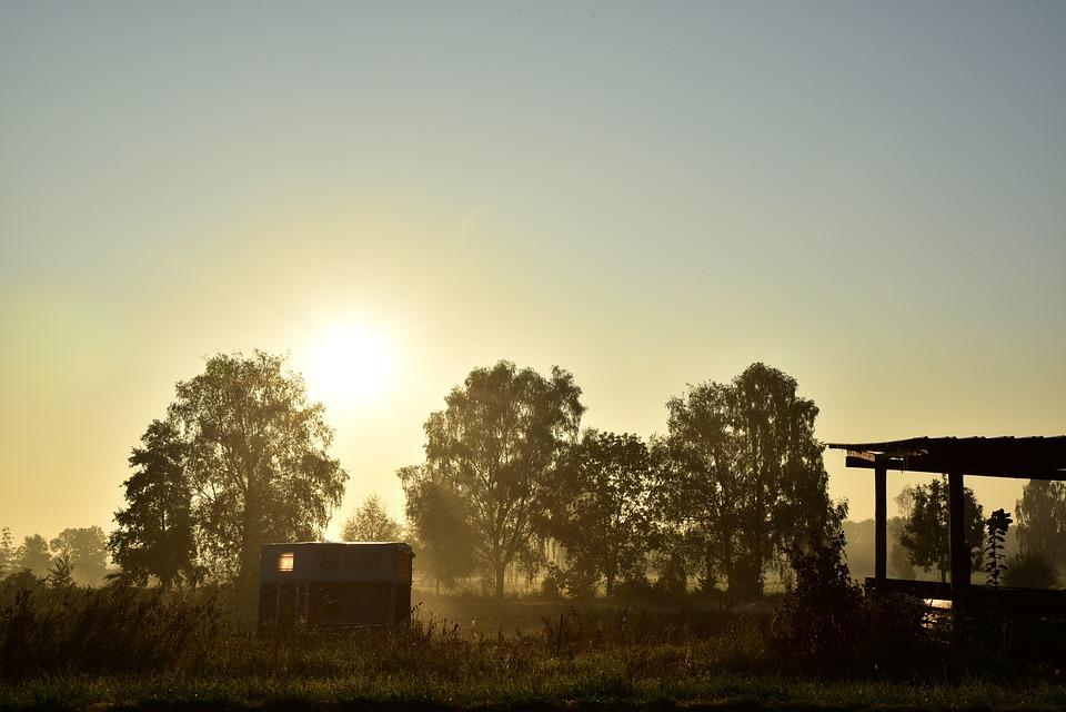 Sunrise, Light, Dawn, Morning, Beginning, Start, Day