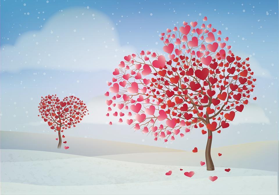 Valentine, Day, Tree, Valentines Day, Valentine Day
