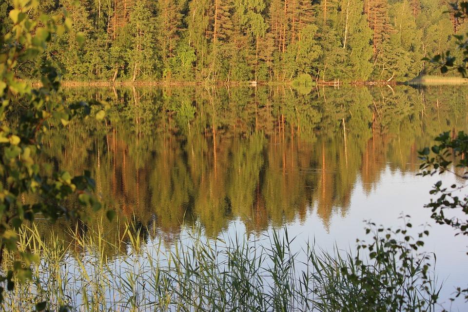 Saimaa, Lake, Daybreak, Landscape