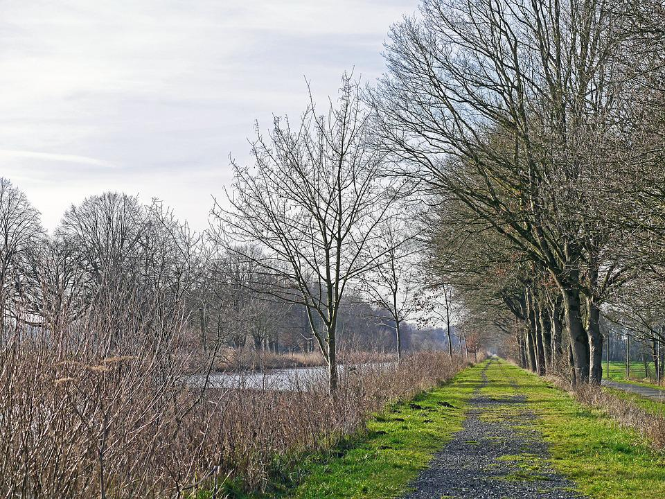 Biotope, Channel, Old Travel, Dead Arm, Towpath