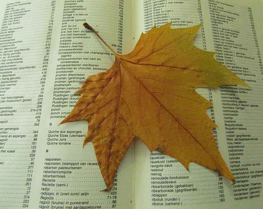 Autumn Leaf, Drying, Dead, Book, Autumn, Save, Season