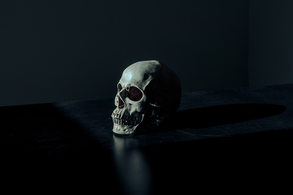 Skull, Creepy, Dark, Eerie, Scary, Death, Dead, Human