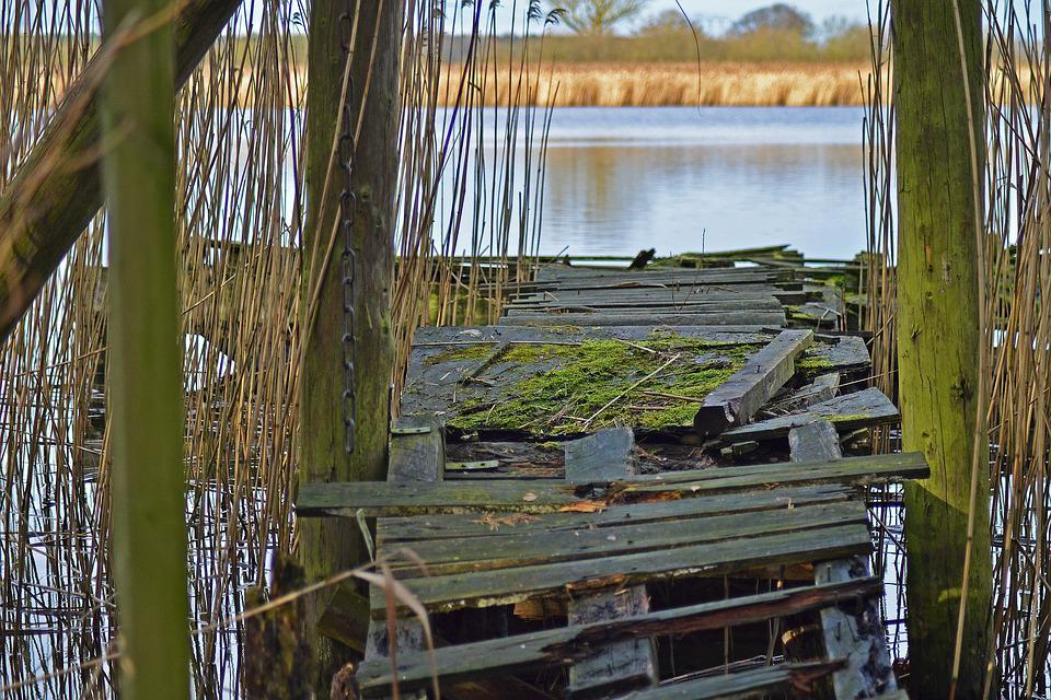 Jetty, Decay, Old, Lake, Reed, Boards