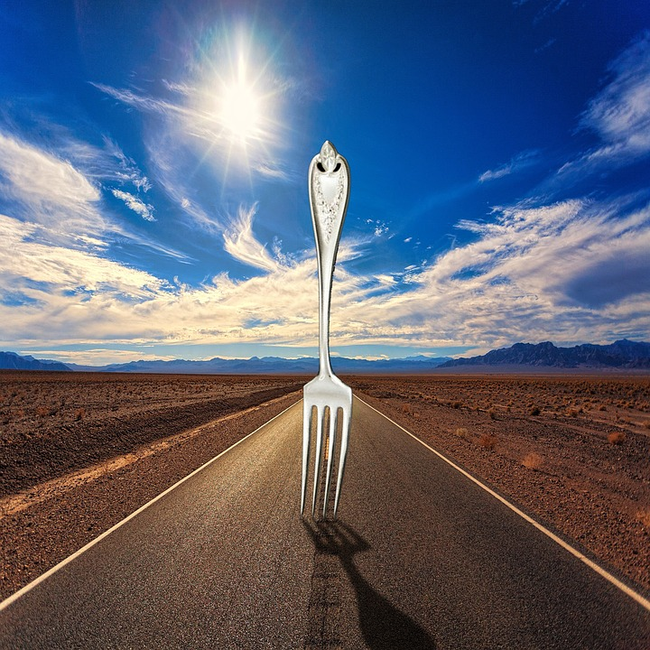 Fork In The Road, Fork, Road, Decision, Direction