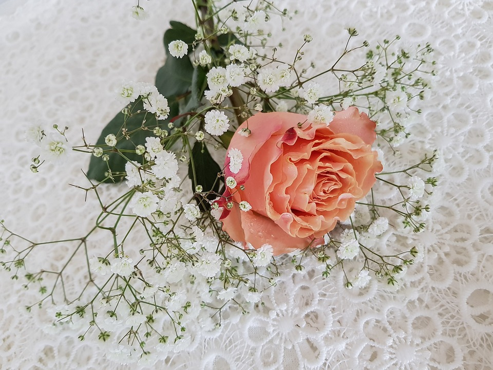 Rose Orange, Gypsophila, Flower Arrangement Lying, Deco