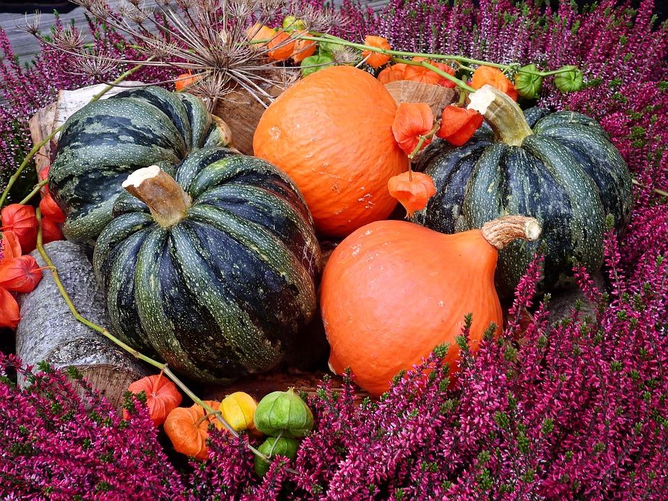 Pumpkin, Flowers, Deco, Decoration, Autumn, Vegetables