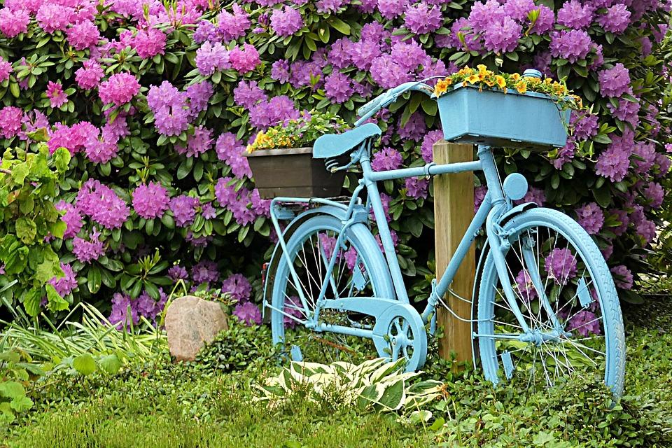 Great Bike, Blue, Deco, Garden, Summer Flowers