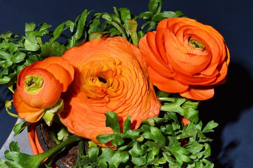 Easter, Deco, Flowers, Artificial Flowers, Decoration