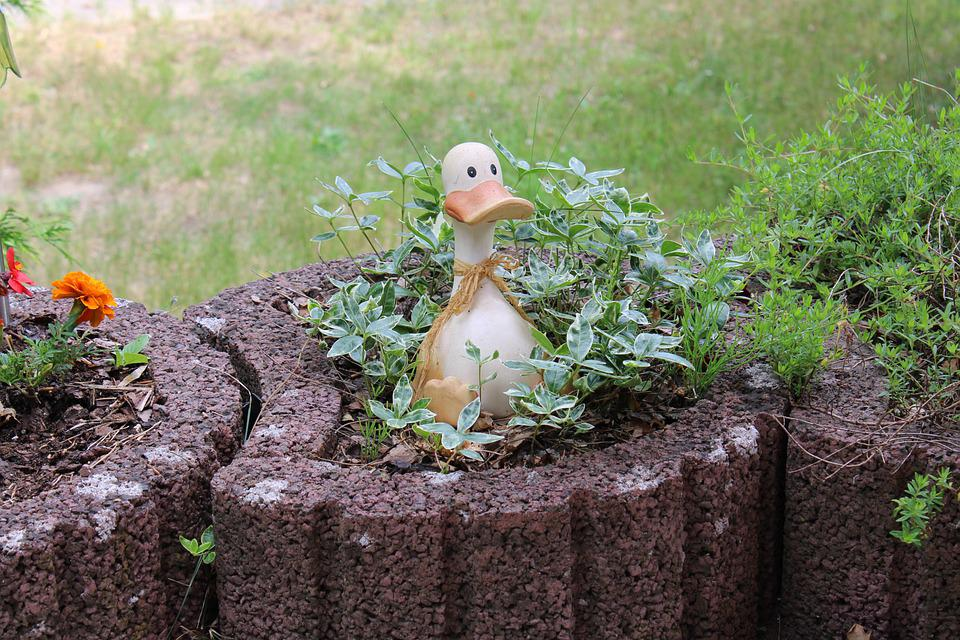 Bird, Duck, Garden, Decoration, Animal