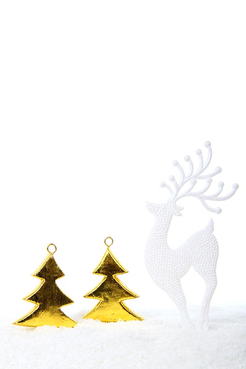 Tree, Trees, Celebration, Christmas, Decoration