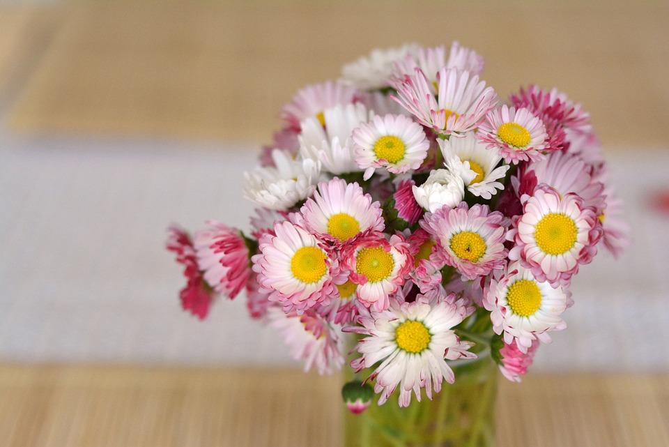 Bouquet, Daisies, Flowers, Decoration, The Delicacy
