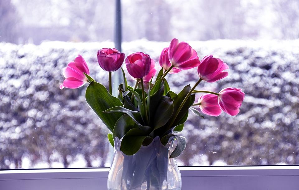 Flower, Nature, Color, Decoration, Summer, Romantic