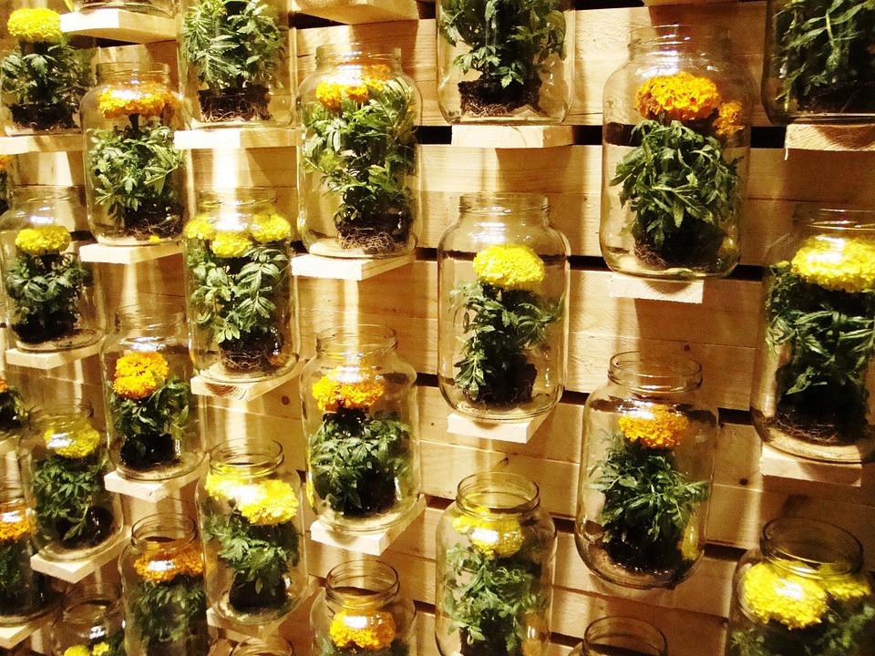 Jar, Steins, Flowers, Garden, Decoration